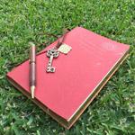diary Scribe thumbnail